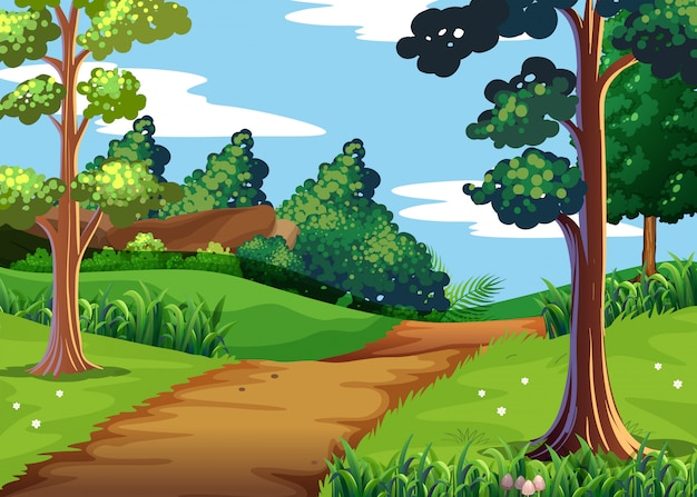Scena przyrodnicza z lasem i szlakiem pieszym