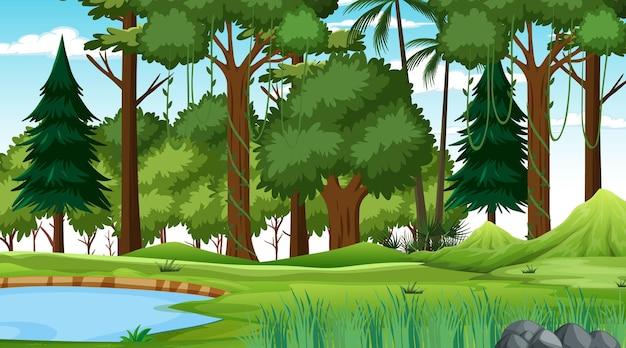Scena przyrody lasu ze stawem i wieloma drzewami w ciągu dnia