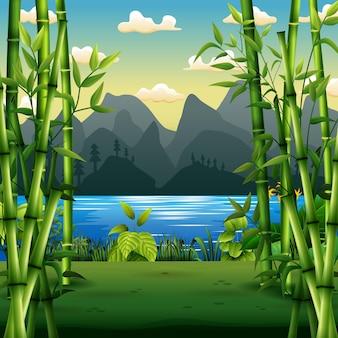 Scena przyrody z bambusowymi drzewami nad rzeką