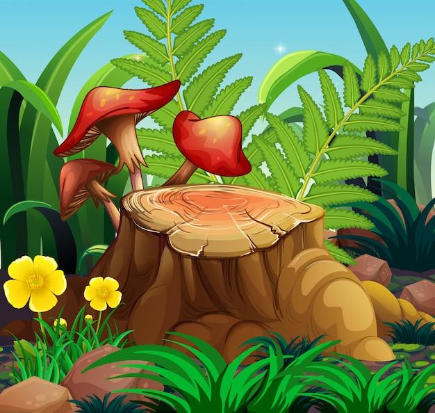 Scena przyrody z grzybami i dziennika
