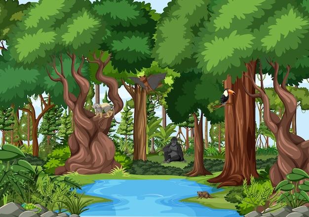 Scena Przyrody Ze Strumieniem Płynącym Przez Las Z Dzikimi Zwierzętami Darmowych Wektorów