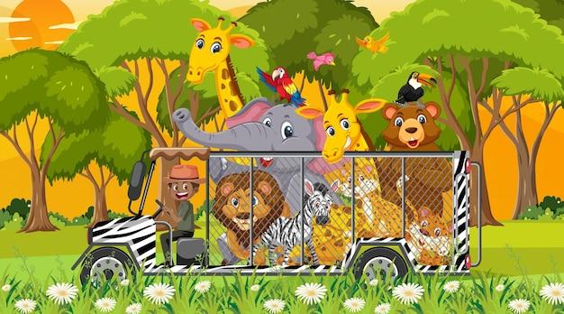 Scena safari z dzikimi zwierzętami w samochodzie w klatce