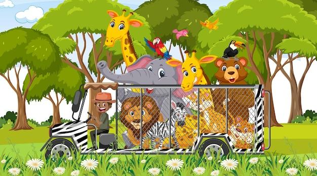 Scena safari z dzikimi zwierzętami w samochodzie z klatką