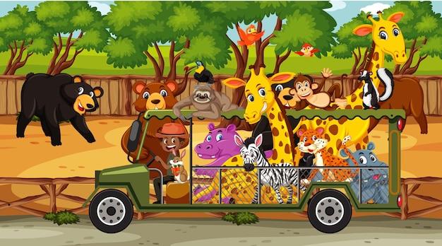 Scena safari z dzikimi zwierzętami w samochodzie
