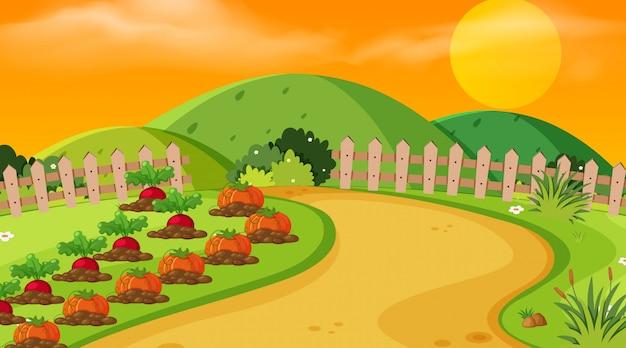 Scena tła na zewnątrz gospodarstwa
