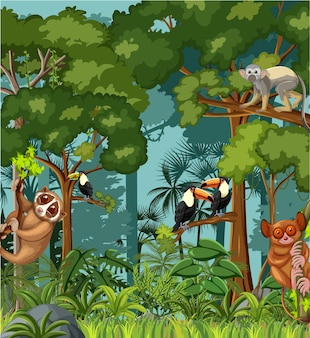 Scena tropikalnego lasu deszczowego z różnymi dzikimi zwierzętami