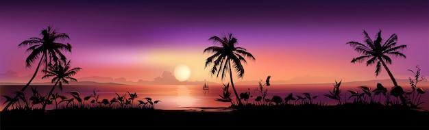 Scena tropikalny zachód słońca