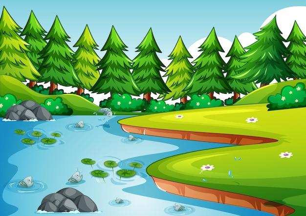 Scena w parku z jeziorem i wieloma sosnami