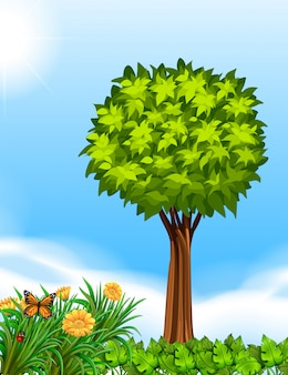 Scena z drzewem w ogródzie