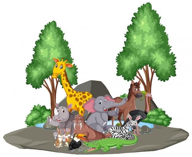 Scena z dzikimi zwierzętami razem nad stawem