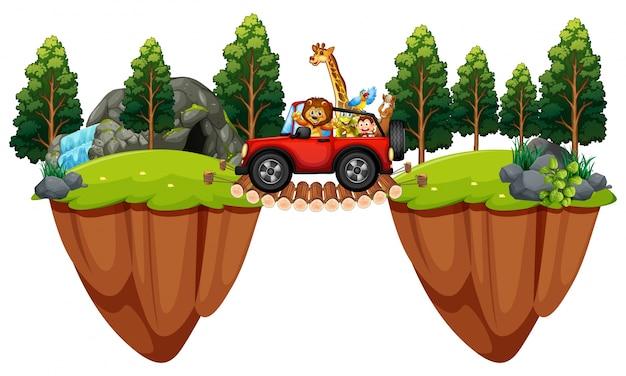 Scena z dzikimi zwierzętami w dżipie