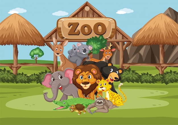 Scena z dzikimi zwierzętami w zoo w czasie dnia