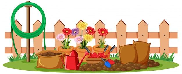 Scena z kolorowymi kwiatami w ogródzie