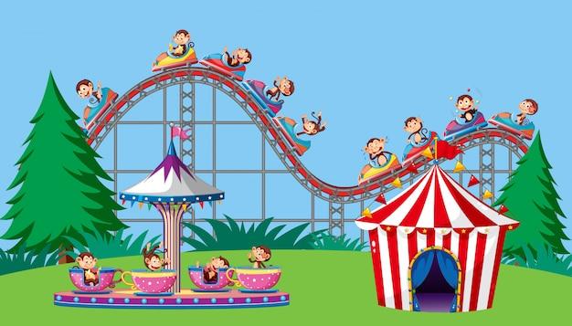 Scena z małpami na cyrkowej przejażdżce w parku