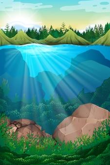 Scena z morzem i pod wodą