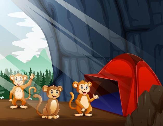 Scena z namiotem kempingowym i trzema małpami