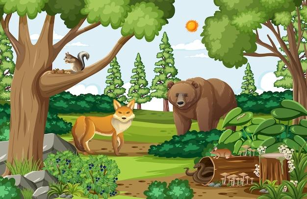 Scena z niedźwiedziem grizzly i lisem w lesie w ciągu dnia