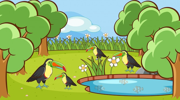 Scena z pieprzojadów ptakami w parku