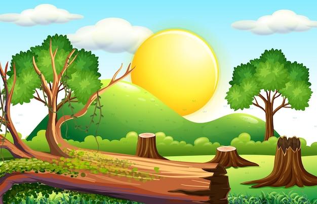 Scena z posiekanym drewnem na polu