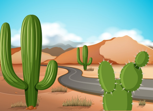 Scena z pustą drogą w pustyni ziemi