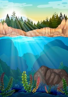 Scena z sosnami i pod wodą