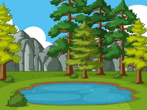 Scena z sosny wokół stawu