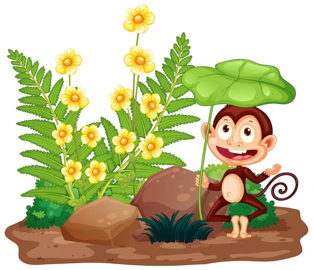 Scena z szczęśliwą małpą w ogródzie