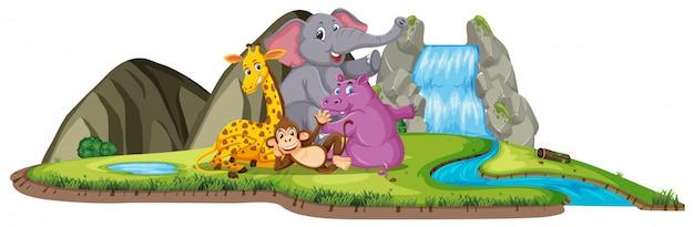 Scena z uroczymi zwierzętami przy wodospadzie