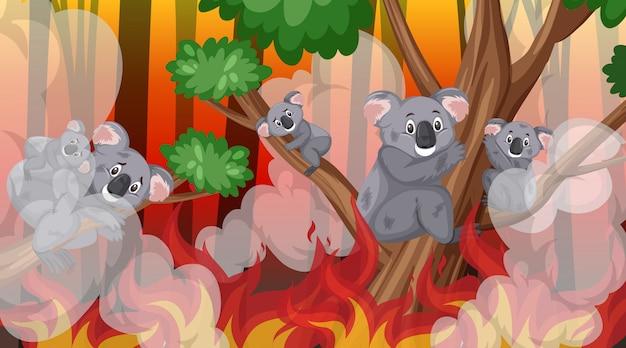 Scena z wielkim pożarem w lesie