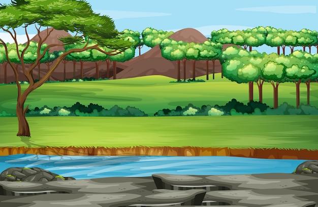 Scena z wieloma drzewami w parku