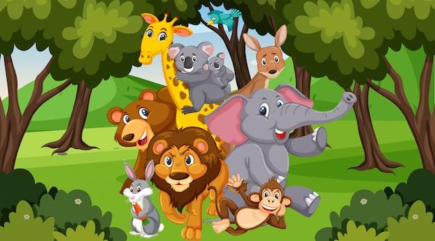 Scena z wieloma dzikimi zwierzętami w parku