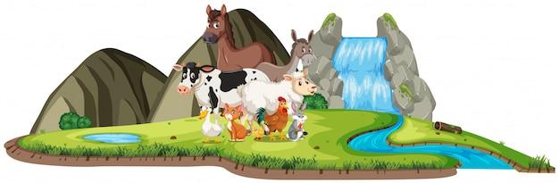 Scena z wieloma dzikimi zwierzętami wodospadem na białym tle