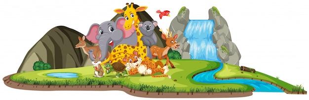 Scena z wieloma uroczymi zwierzętami przy wodospadzie