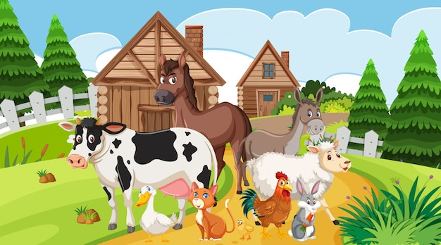 Scena z wieloma zwierzętami hodowlanymi w zagrodzie