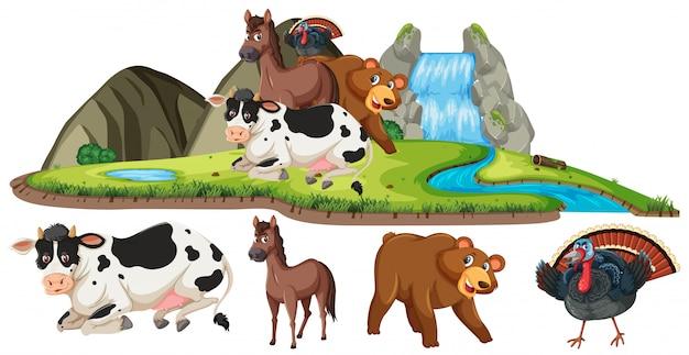 Scena z wieloma zwierzętami przy wodospadzie w ciągu dnia