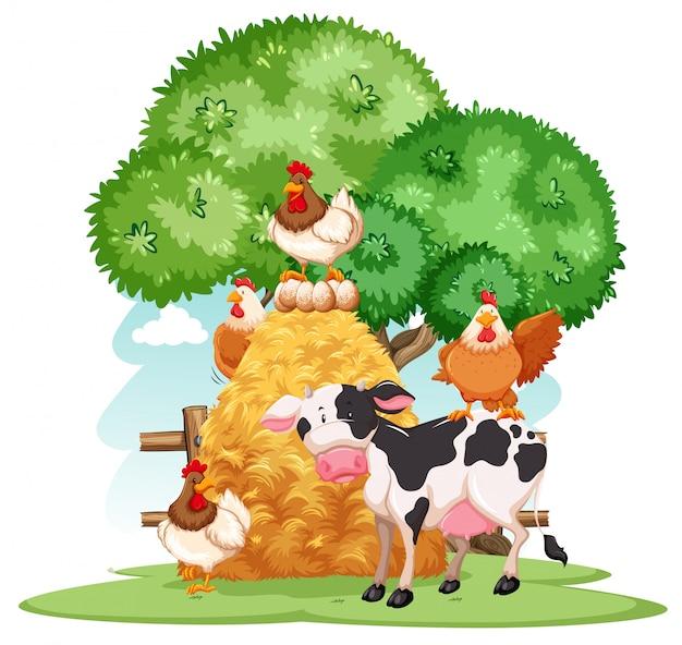 Scena z wieloma zwierzętami w gospodarstwie