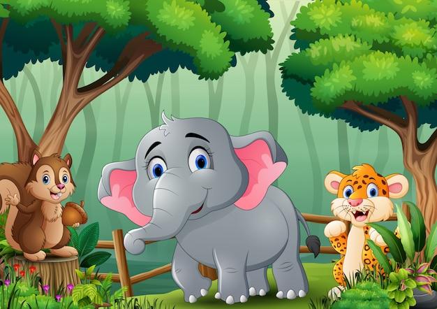 Scena z wieloma zwierzętami w lesie