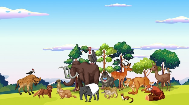 Scena z wieloma zwierzętami w parku