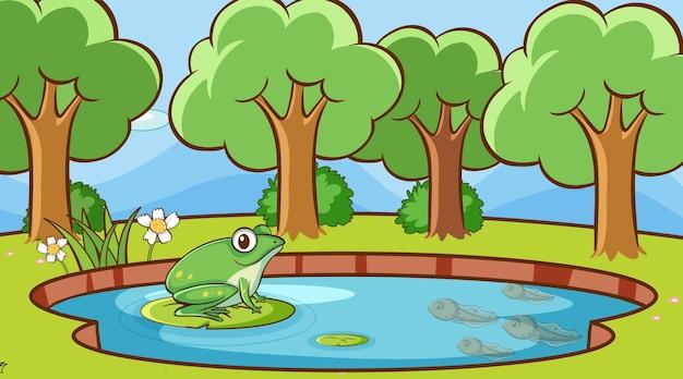 Scena z zieloną żabą w stawie