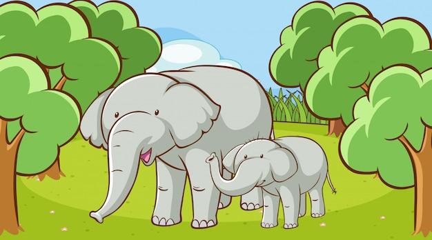Scena ze słoniami w lesie