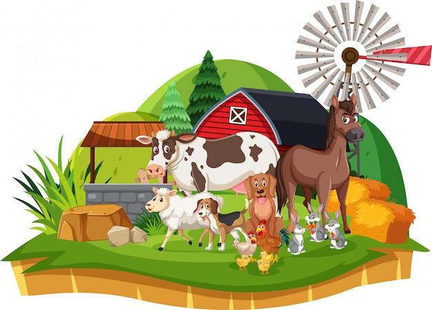 Scena ze zwierzętami hodowlanymi w zagrodzie