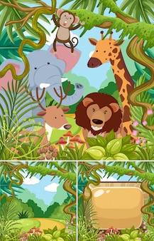 Sceny przyrody z dzikimi zwierzętami w dżungli