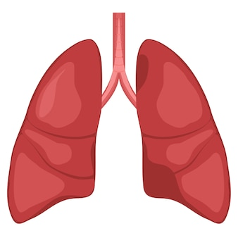 Schemat anatomii ludzkiego płuca. grafika przedstawiająca raka układu oddechowego.