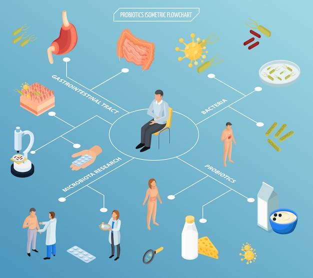 Schemat blokowy izometryczny terapii probiotycznej