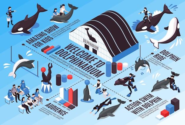 Schemat izometryczny infografiki delfinarium z niesamowitą widownią podczas przejażdżki delfinami, pływanie z elementami delfinów