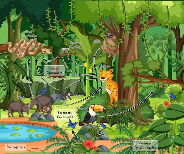 Schemat przedstawiający ekosystem w ognistej scenie z dzikimi zwierzętami