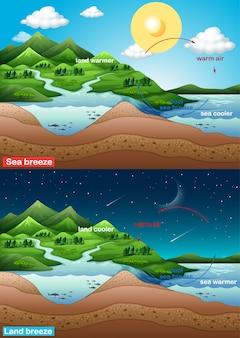 Schemat przedstawiający morską i lądową bryzę