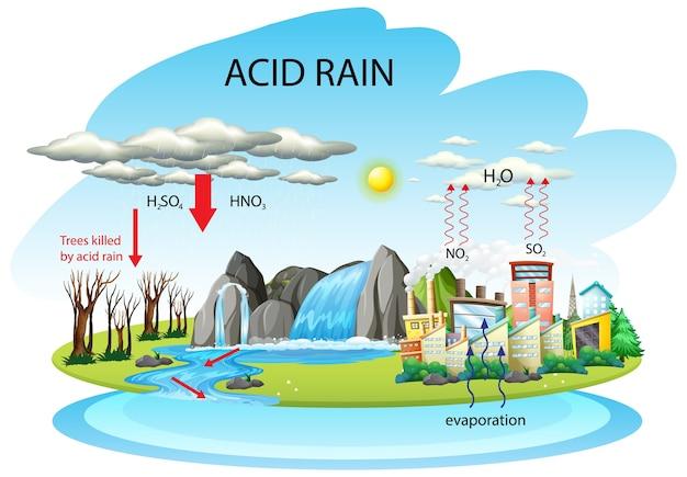 Schemat przedstawiający ścieżkę kwaśnego deszczu na białym tle
