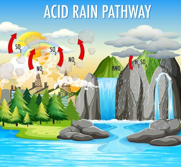 Schemat przedstawiający ścieżkę kwaśnego deszczu