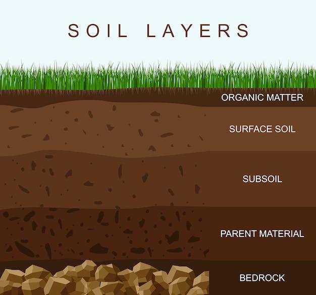 Schemat warstw gleby tekstura ziemi, kamienie. ziemia z zieloną trawą na górze. infografiki geologii.